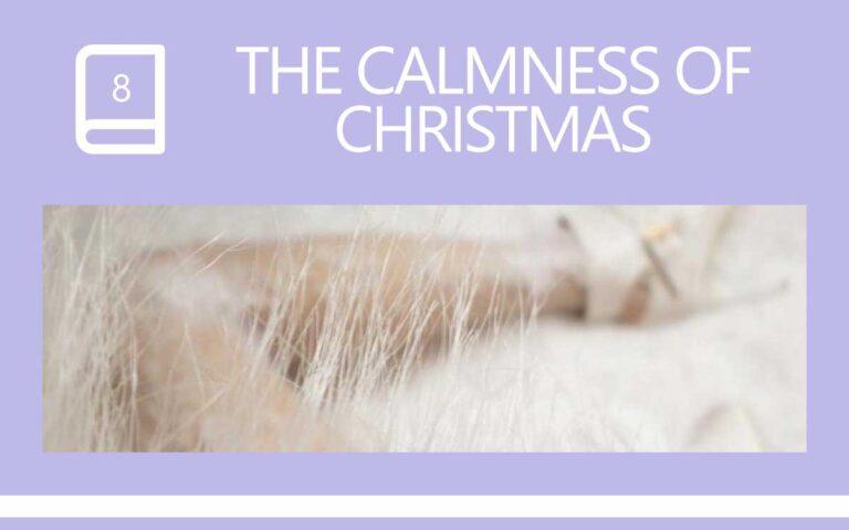 8 • THE CALMNESS OF CHRISTMAS