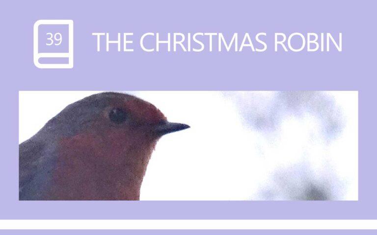 39 • THE CHRISTMAS ROBIN