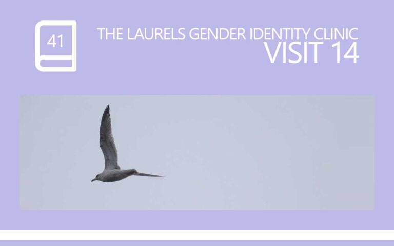 41 • THE LAURELS GENDER IDENTITY CLINIC VISIT 14