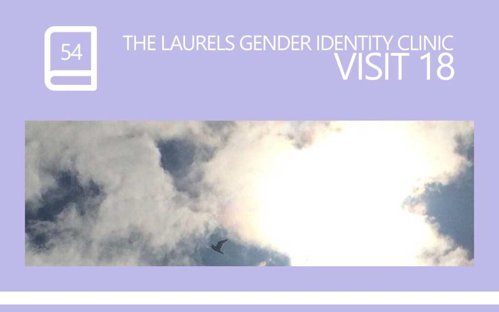 The Laurels Gender Identity Clinic Visit 18 - The Hope Visit, with Transgender Model & Artist Sophie Lawson