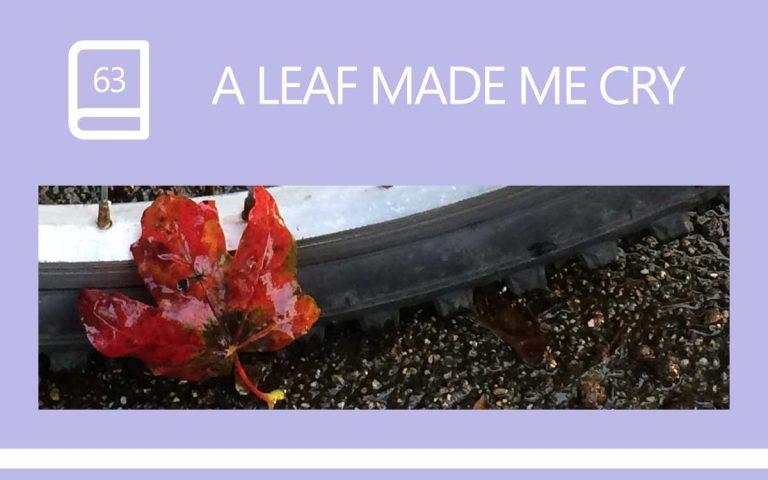 63 • A LEAF MADE ME CRY