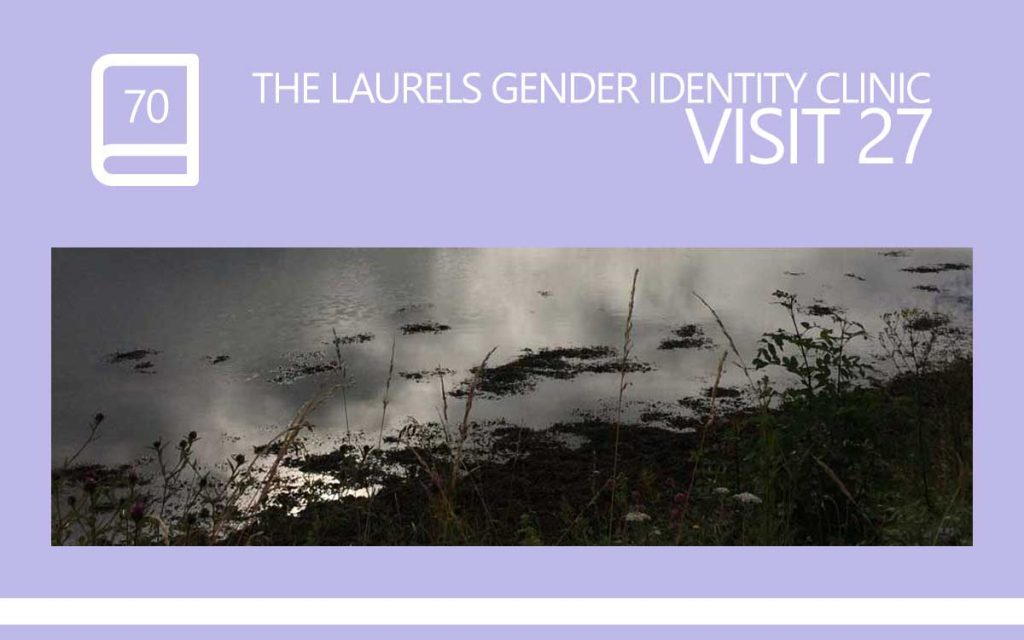 The Laurels Gender Identity Clinic Visit 26 - The 'I said no to genital reassignment surgery' visit ... we spoke about Covering Bald Patches in Social Situations and GRS, to which I said No ... but was I supposed to say yes? A diary entry, with Transgender Model & Artist Sophie Lawson