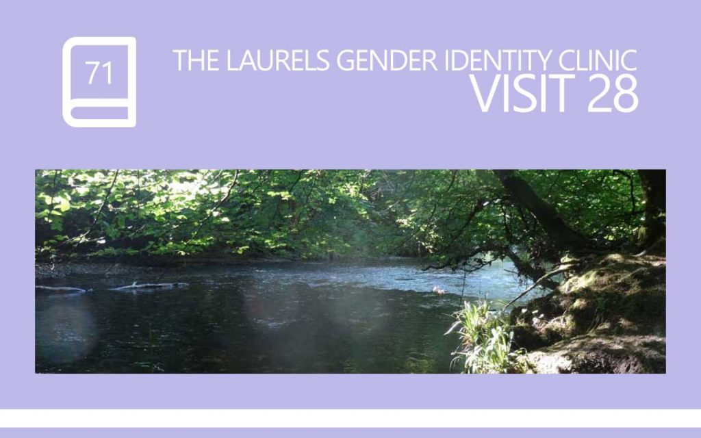 The Laurels Gender Identity Clinic Visit 28 - The 'Saying Goodbye To My Therapist' visit ... We spoke about the Future, about Spiritual Practices and about remembering to Leave No Stone Unturned. A diary entry, with Transgender Model & Artist Sophie Lawson