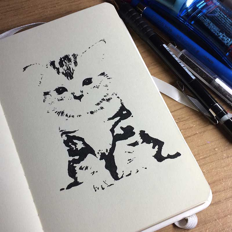 Cat Ink Drawing. Day 13 of Inktober 2018, with Transgender Artist Sophie Lawson