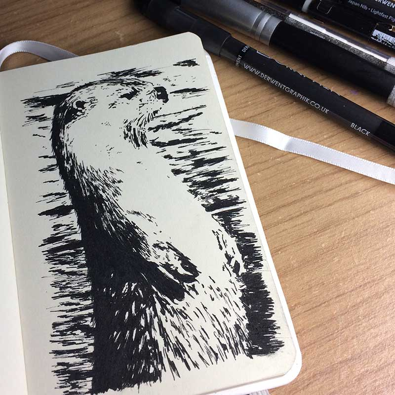 Otter Ink Drawing. Day 15 of Inktober 2018, with Transgender Artist Sophie Lawson
