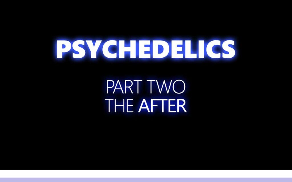 Psychedelics Part Two : The After My Psychedelic Experience with DMT - An About the Tings Episode 146 of the So Free Art Podcast, with Transgender Artist Sophie Lawson