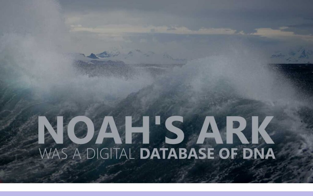 Noah's Ark was a Digital Database of DNA - An About the Tings Episode 158 of the So Free Art Podcast, with Transgender Artist Sophie Lawson