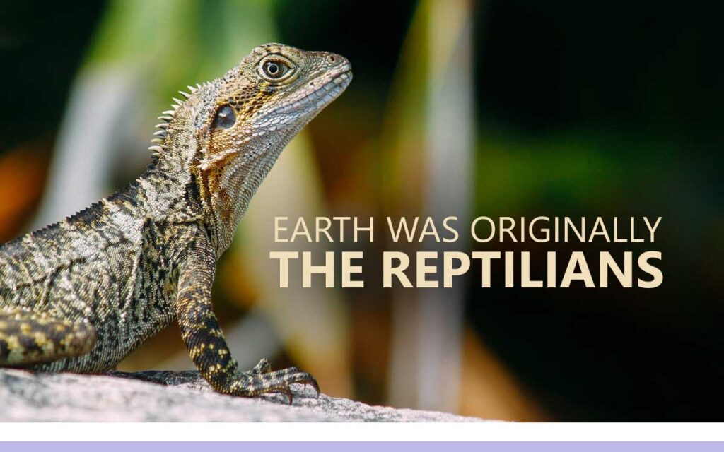 Earth was originally the Reptilians - An About the Tings Episode 167 of the So Free Art Podcast, with Transgender Artist Sophie Lawson