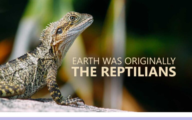 167 • EARTH WAS ORIGINALLY THE REPTILIANS