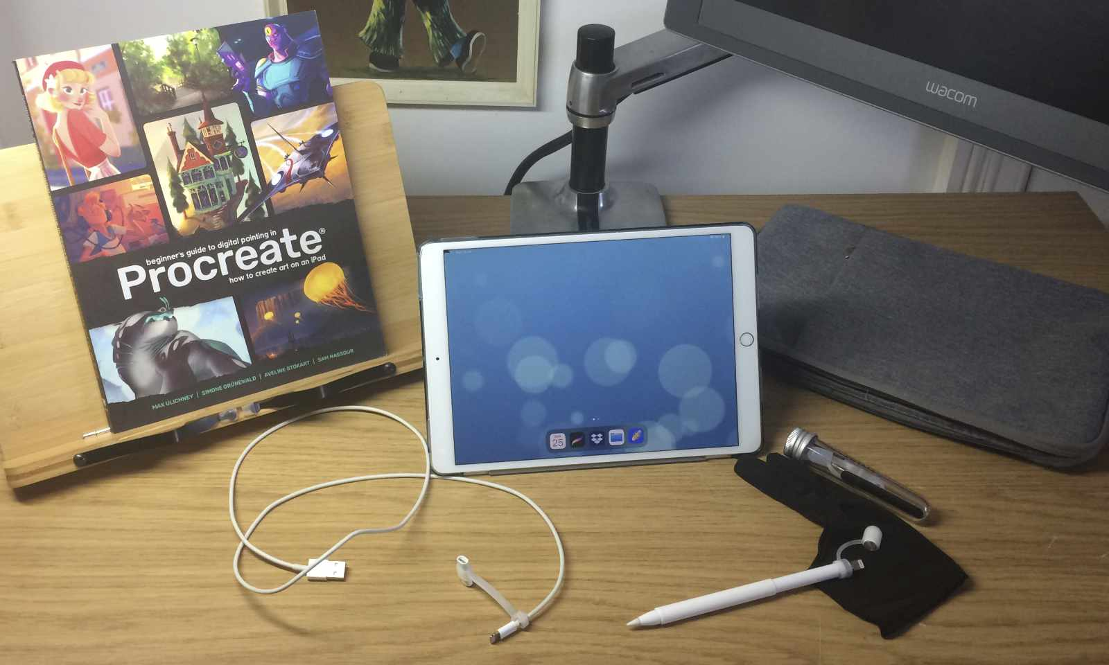 My iPad Pro and Tools - Learning Procreate Introduction with Artist Sophie Lawson
