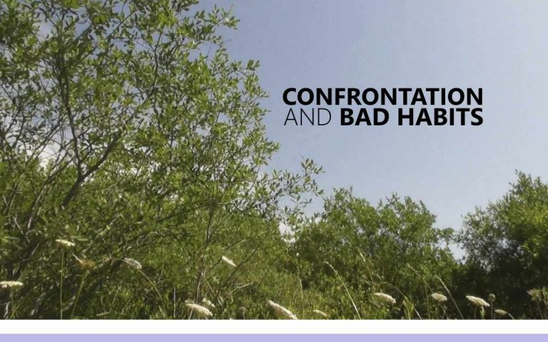 173 • CONFRONTATION AND BAD HABITS