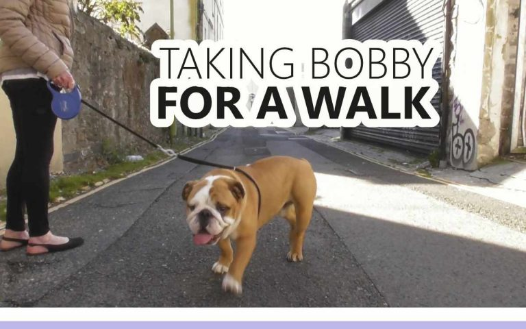 182 • TAKING BOBBY FOR A WALK